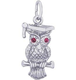 Graduation Owl Charm