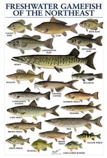 Freshwater Gamefish Poster of Northeast