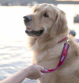 NEW - OTW Dog Leash
