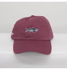 Striper Newport Mid Fit Hat