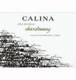 Calina Cabernet Sauvignon