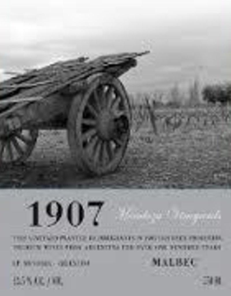 Mendoza Vineyards 1907
