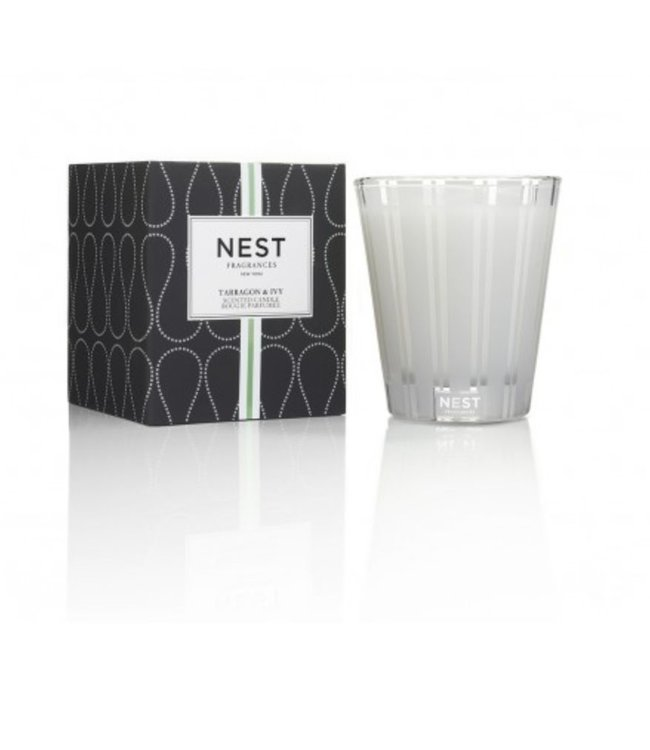 Nest Fragrances Classic Candle - Tarragon & Ivy
