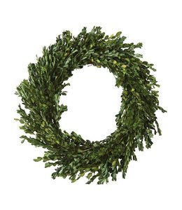 Mud Pie Preserved Boxwood Wreath