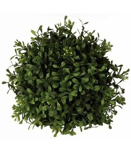 Boxwood Orb 7in