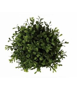 Boxwood Orb 5in
