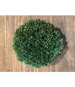 "A & B Home 6"" Boxwood Orb"