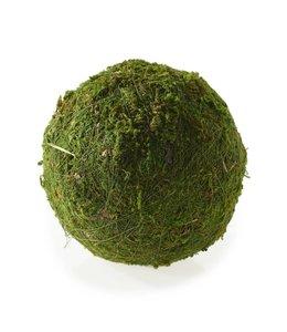 "Moss Sphere - 6"""
