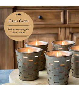 Park Hill Collections Citris Grove Olive Bucket Candle