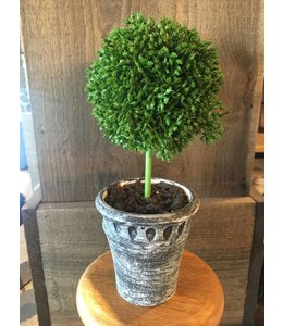 A & B Home Faux Topiary