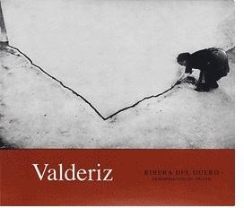 Wine Bodegas Y Vinedos Valderiz Ribera del Duero Tinto 2011