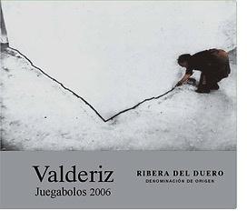 Wine Bodegas Y Vinedos Valderiz Ribera del Duero Juegabolos 2011