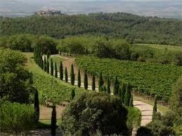 Wine Poggio Antico Brunello di Montalcino 2011