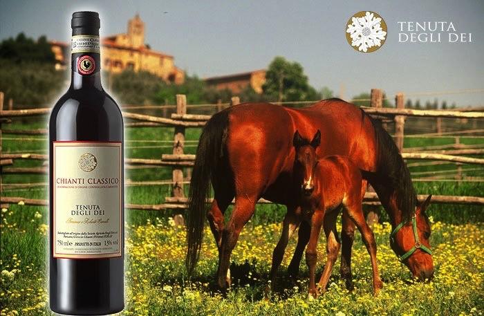 Wine Cavalli Tenuta Degli dei Chianti Classico 2013