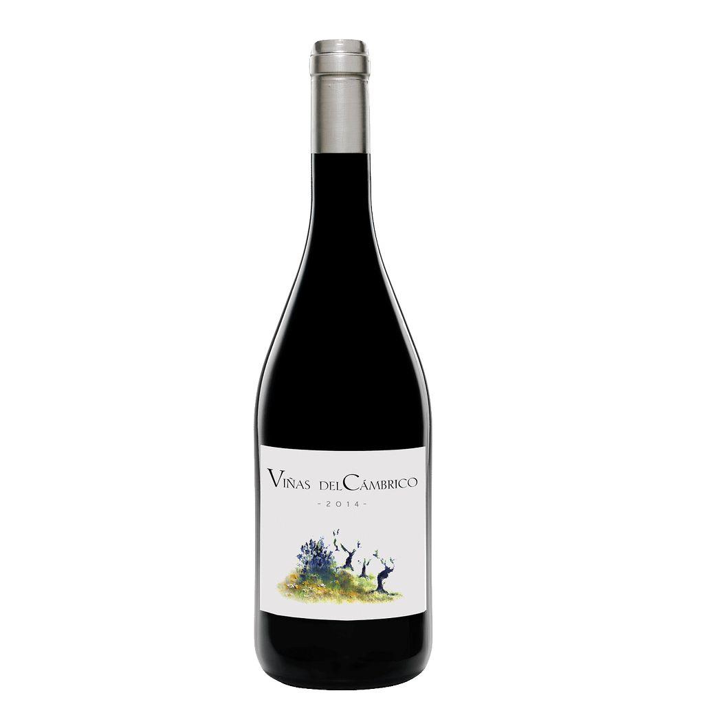 Wine Vinas del Cambrico Sierra de Salamanca 2014