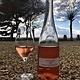 Wine Chateau Soucherie Rose de Loire 2017