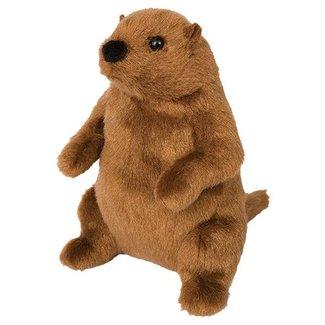 Douglas Co Inc. Mr G Groundhog