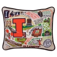 Catstudio Illinois University College Embroidered Pillow