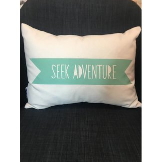 12x16 Seek Adventure Pillow - Mint