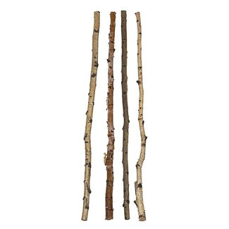 "59"" Wood Birch Branch"