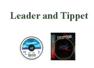 LEADERS AND TIPPET