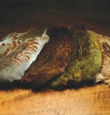 WAPSI HUNGARIAN PARTRIDGE WHOLE SKINS