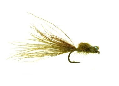 SCOTTS DIRTY DAMSEL - PER 3