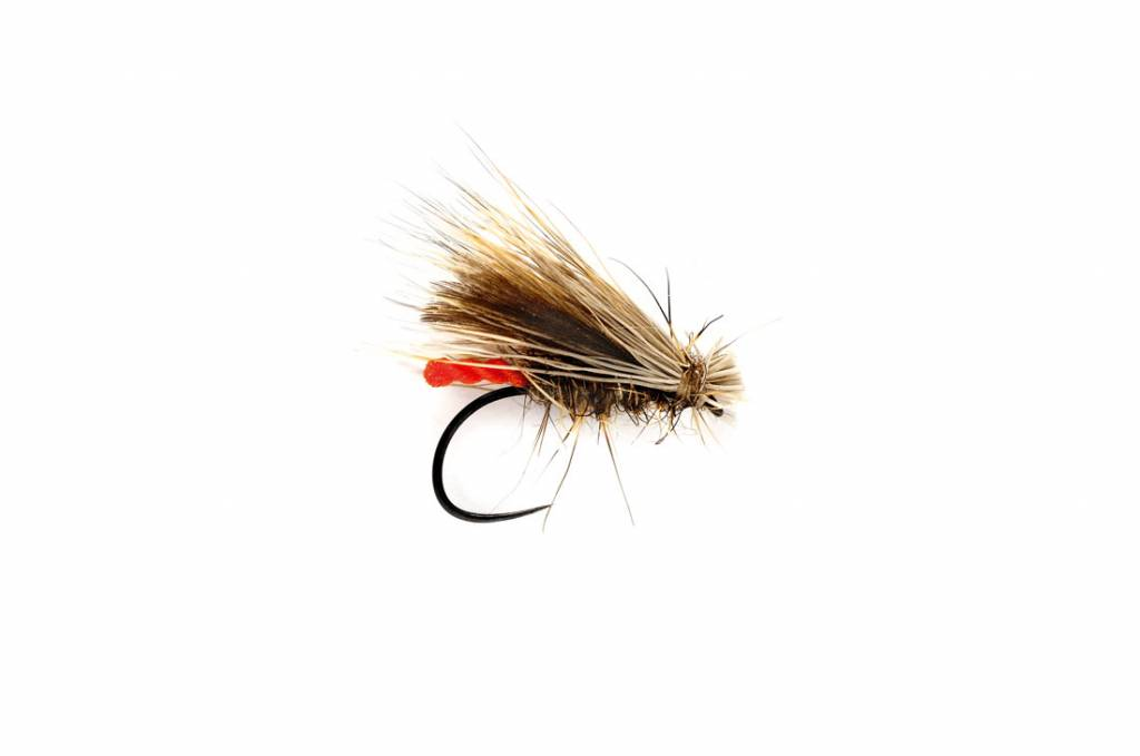 CHAMPIONSHIP CADDIS - BARBLESS