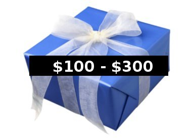 Gifts $100-$300