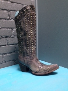 Boot Chocolate Full Studded Zip