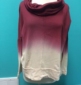 Sweater Ombre Cowl Neck Sweater