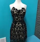 Dress Black Slvless Lace Dress w/ Contrast
