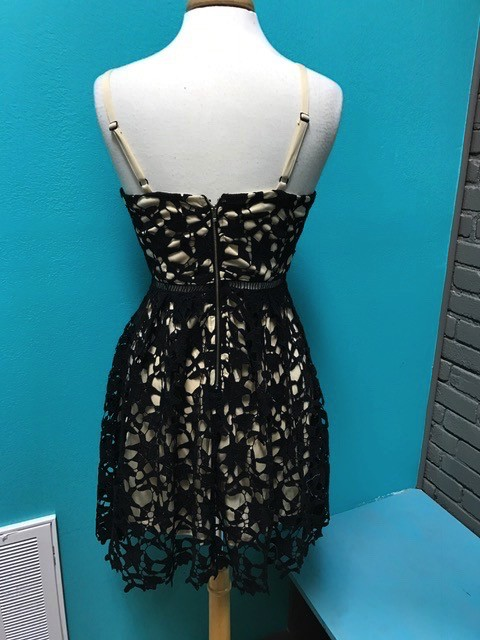 Dress Black Slvless Lace Dress w/ Contrast