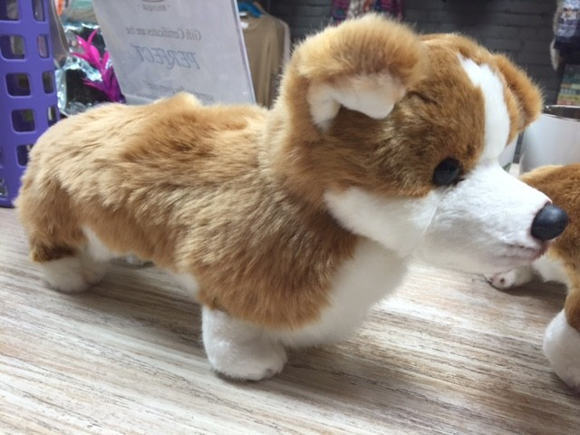 Kid's Corgi Large