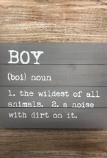Decor Boy Noun Pallet Sign 14x11