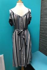 Dress Blue/Tan Stripe Button Dress