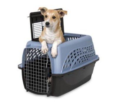 """Petsmate Petmate Two Door Top Load Pet Kennel, 24"""" Blue/Coffee"""