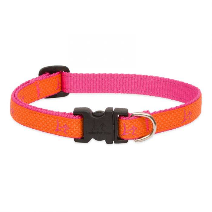 "Lupine Lupine Club - Sunset Orange 1/2"" Width Collar Small 8-12"""