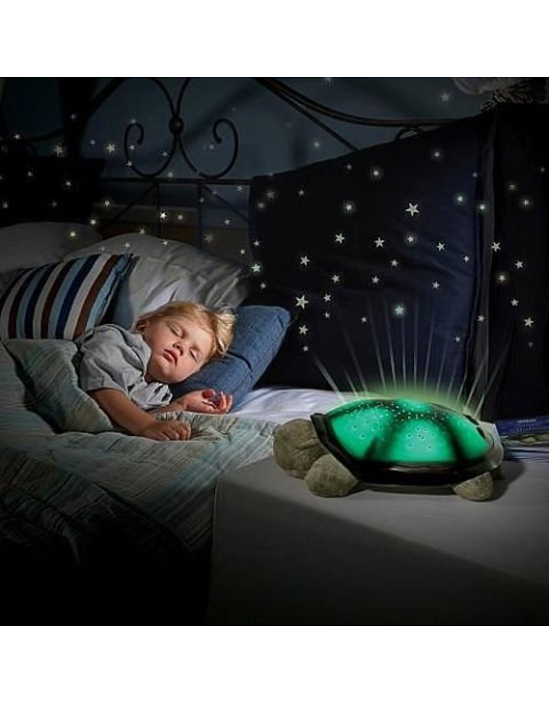 Cloud b Twilight Turtle Night Light by Cloud b