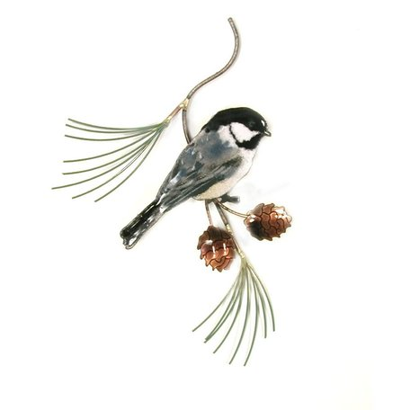Chickadee on Pine