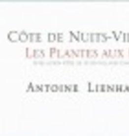 Natural Antione Lienhardt Cote de Nuit-Villages Les Plantes aux Bois 13