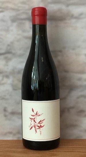 Arnot-Roberts Pinot Noir Clary Vyd. 16