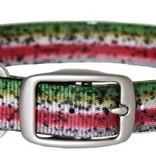 Dublin Dog Rainbow Trout Collar M