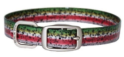 Dublin Dog Rainbow Trout Collar M