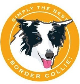 Paper Russels Border Collie Car Magnet