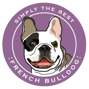 Paper Russels French Bulldog Car Magnet