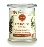 One Fur All Evergreen Forest Candle