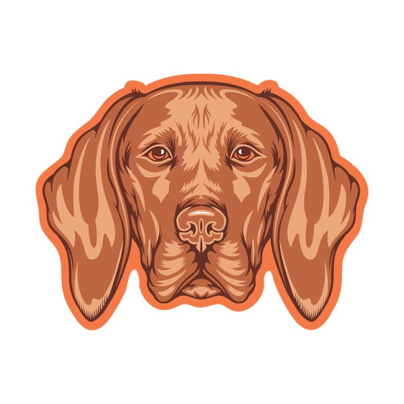 GoldenDoodle, LLC Vizsla Car Magnet