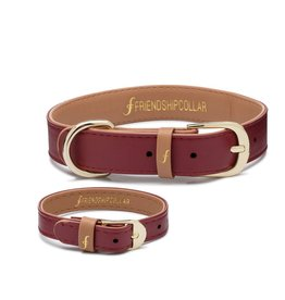 Independent Bordeaux Friendship Collar - XXXS