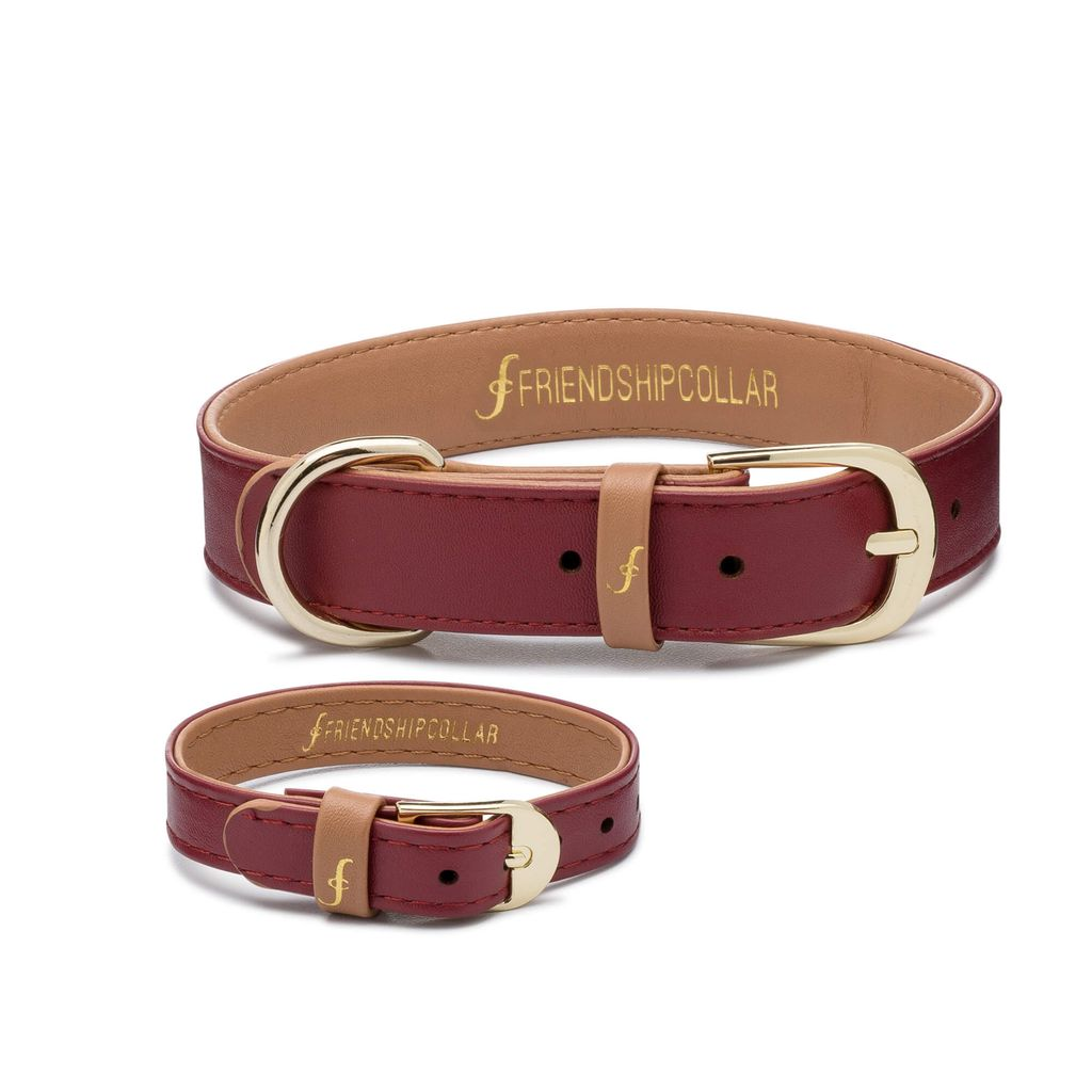 Independent Bordeaux Friendship Collar - Large